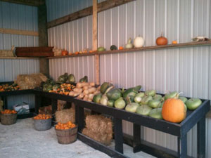 Fall Produce and Décor Near Milwaukee