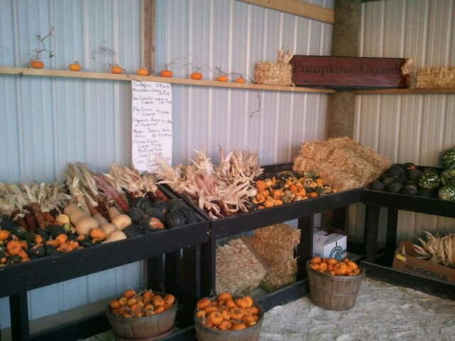 Cedarburg Store with Pumpkins For Sale