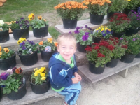 Ozaukee County Flowers for Sale