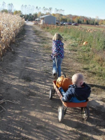 Wagon Rides in Ozaukee County