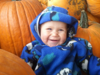 Ozaukee County Pumpkin Patch